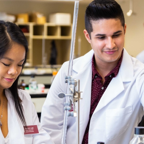 male and female pharmacy students working on lab project