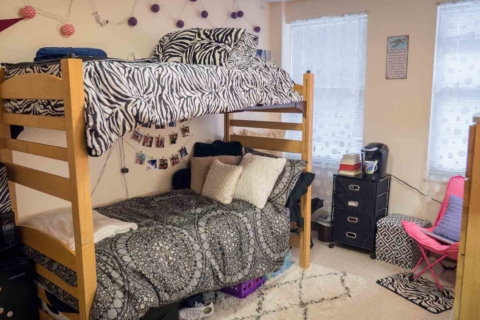 bunk beds in decorated dorm room